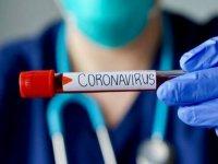 საქართველოში კორონავირუსის 6 ახალი შემთხვევა დაფიქსირდა